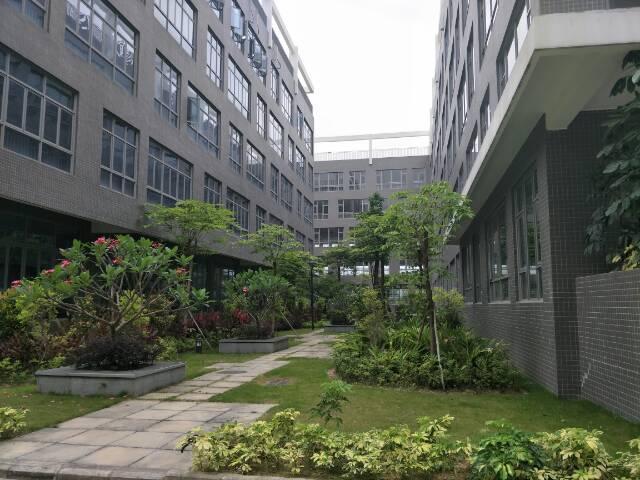 坪山大工业区楼上一层2200平出租