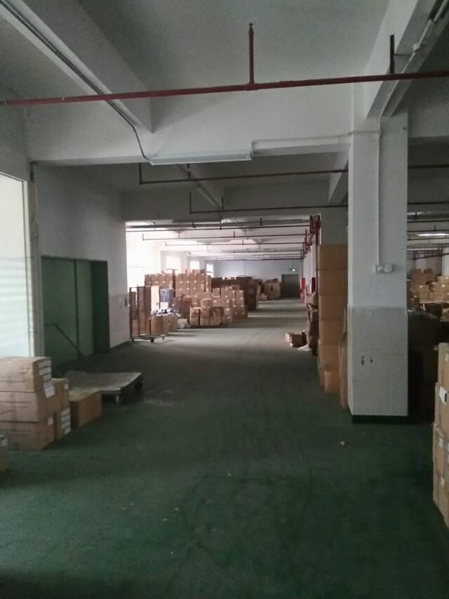 黄江镇中心区新出750平方一楼上标准厂房