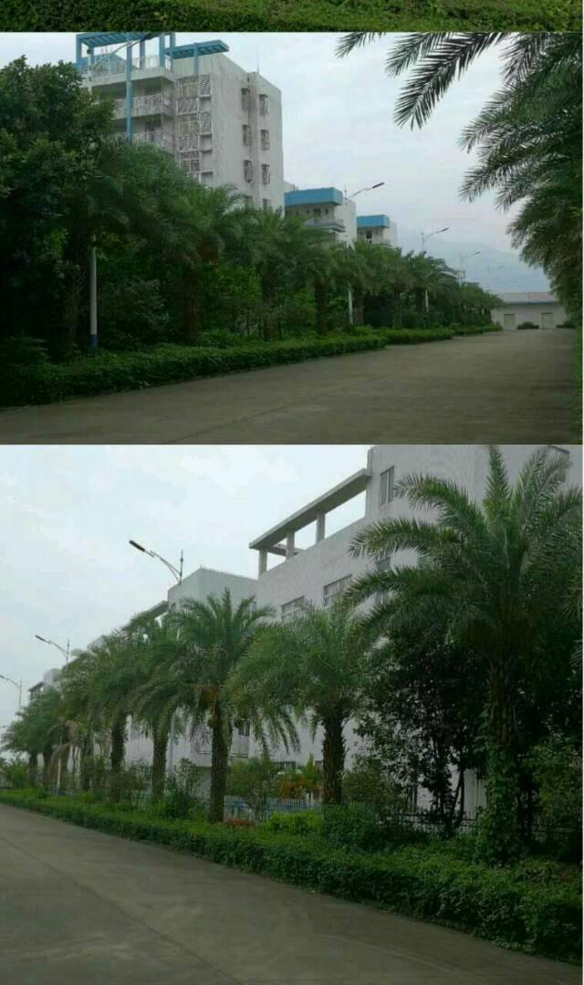 惠州博罗占地105亩厂房出售