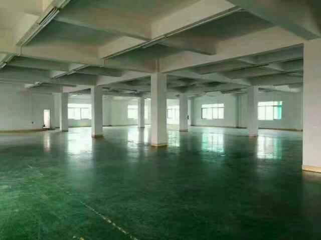 工业园独栋3层标准厂房3200方火爆招租