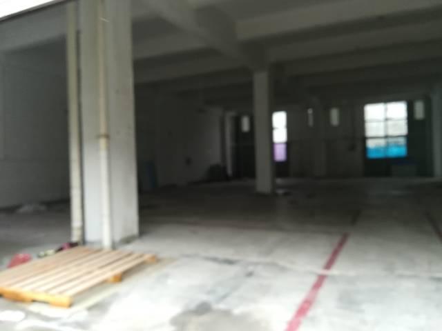 新出厂房一楼500平米