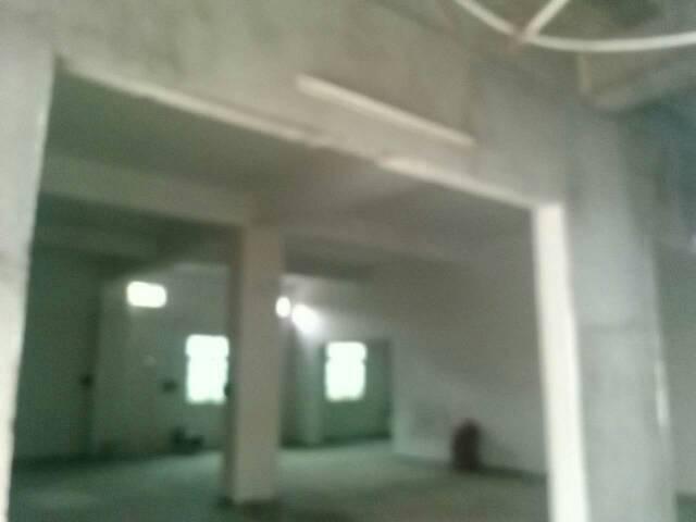 大岭山新出独院标准厂房5800平米