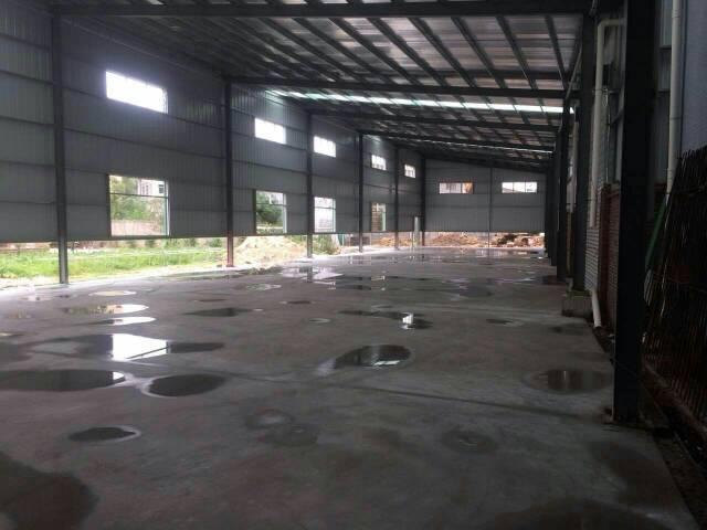 横沥镇原房东全新独院钢构厂房800平方,滴水七米