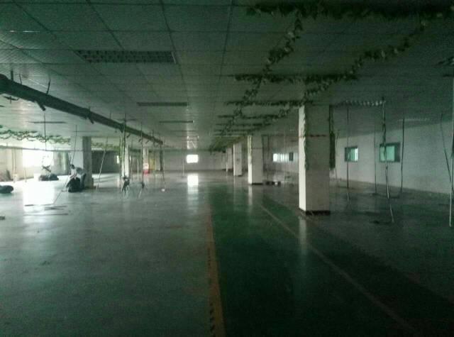 黄江北岸工业园内分租楼上3800平可做珍珠棉