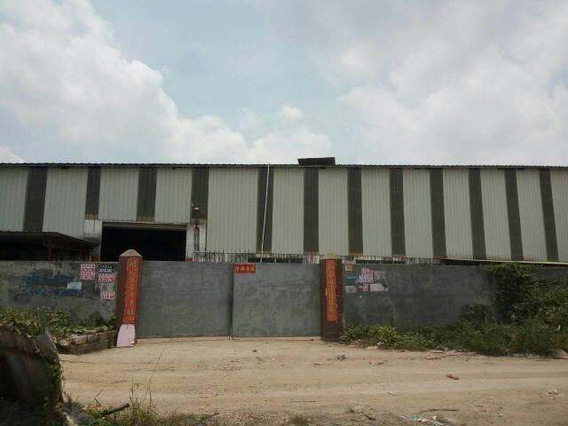沙步原房东独院单层铁皮厂房1800平方出租