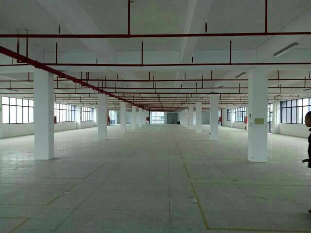 红本厂房,大工业区楼上整层5200平方招租-图2