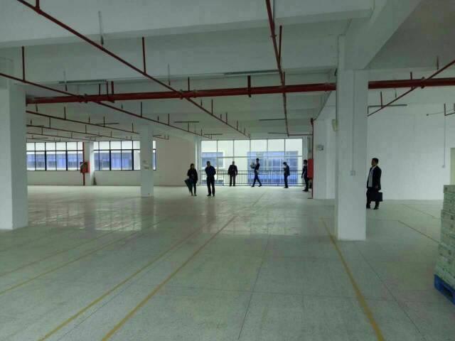 红本厂房,大工业区楼上整层5200平方招租