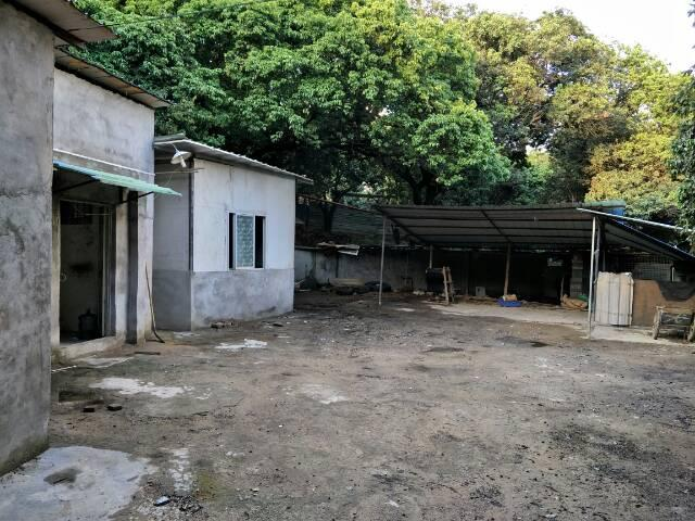 大岭山杨屋最小原房东独门独院厂房800平出租