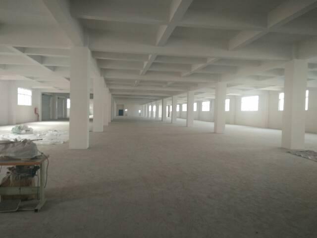 虎门靠长安新出全新厂房四楼2800平方。交通方便,水电齐全-图3