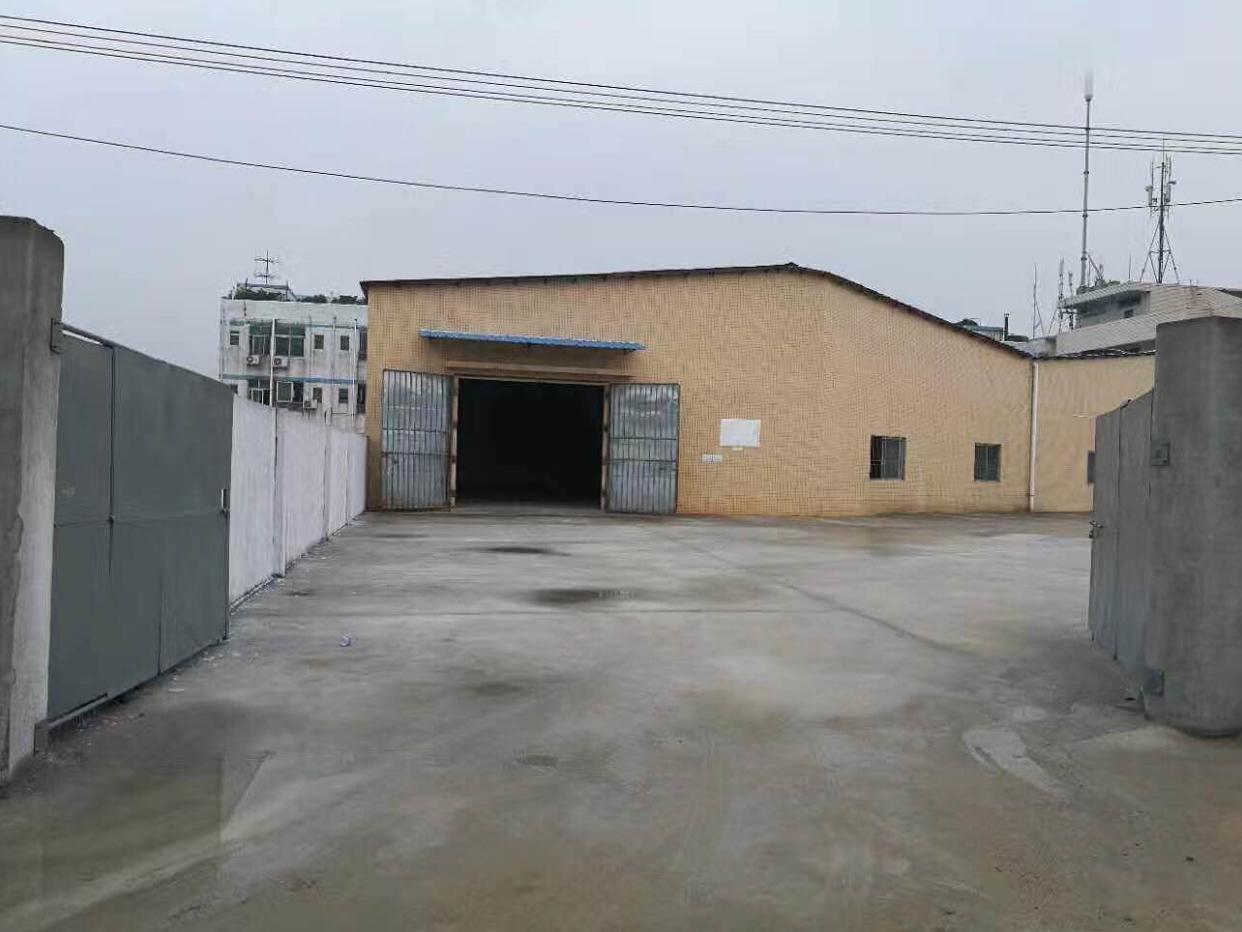 常平大京九附近新出独院钢构厂房招租