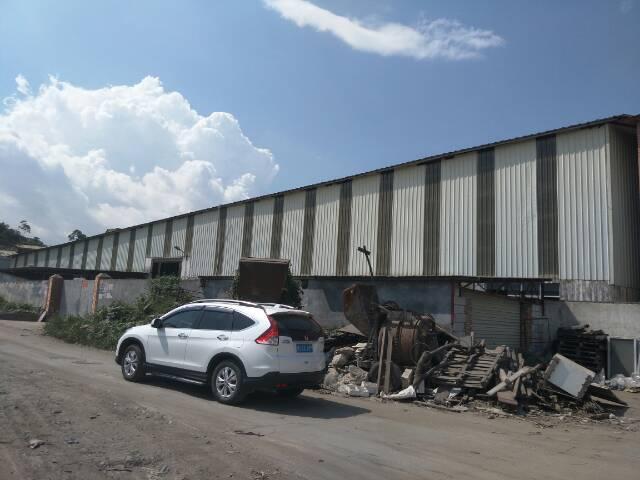 单一层独院钢构厂房