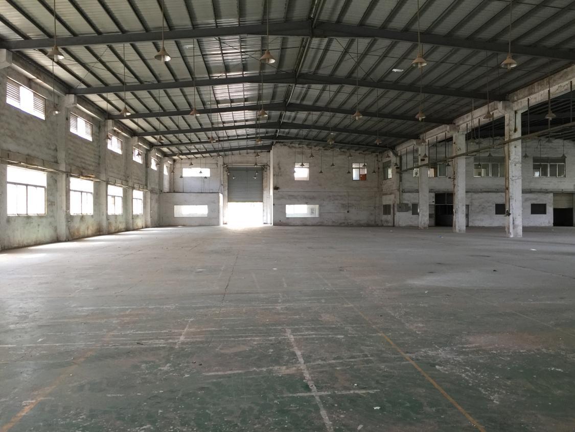 公明新出独门独院单一层钢构9米高11000平方