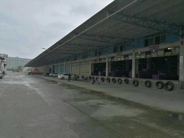 松岗罗田高速出入口附近新出物流仓库11000平方-图2