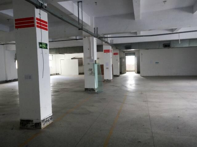 横岗安良万俊隆附近一楼780平米厂房招租-图4