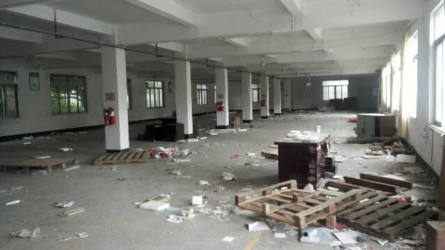 清溪镇新出标准厂房一楼1600平方