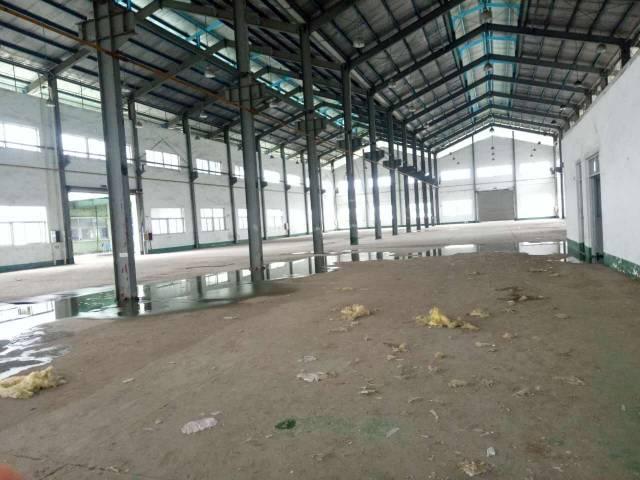 黄江可分租单一层钢构,滴水12米