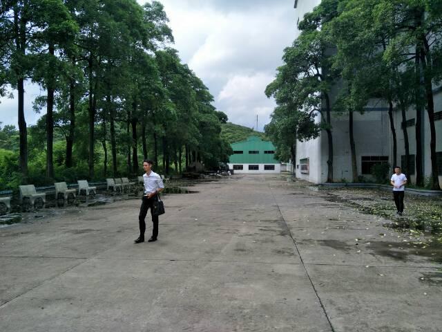 樟木头花园式独院厂房22000平方招租-图8
