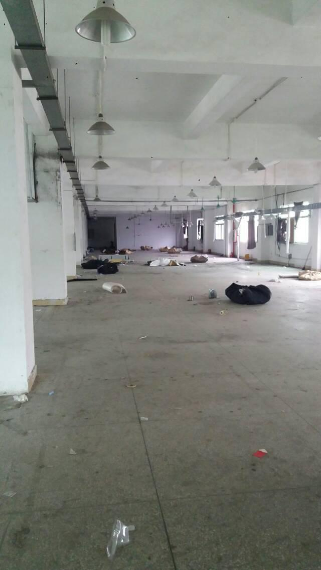 黄江镇中心区新出1800平方标准厂房