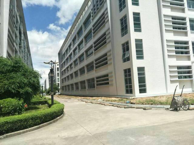坪山大工业区独栋厂房2、3楼各3000平出租