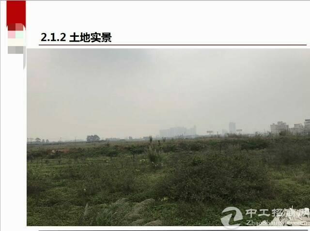 肇庆国有土地出售600亩-图4