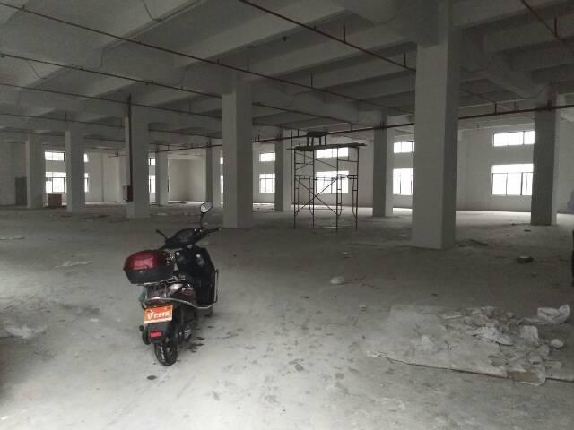 大朗全新厂房招租