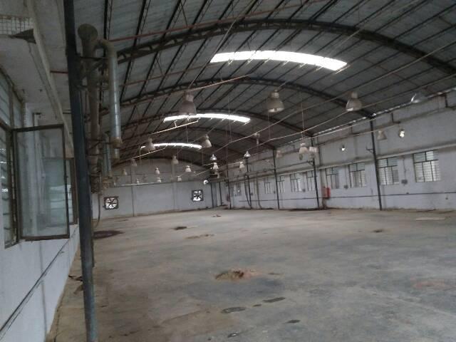 企石镇独栋单一层滴水8米钢构厂房出租