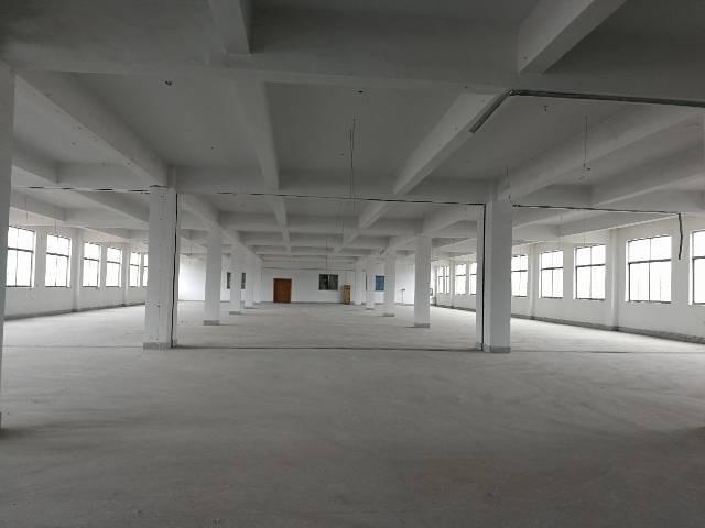 堰桥工业园1800平米轻工厂房低价出租