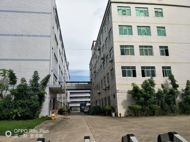 龙岗中心城村委厂房共2层,各1300平方13元出租