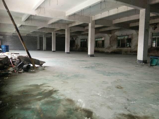 长安沙头358省道旁,新空出1000平厂房,加一间宿舍出租