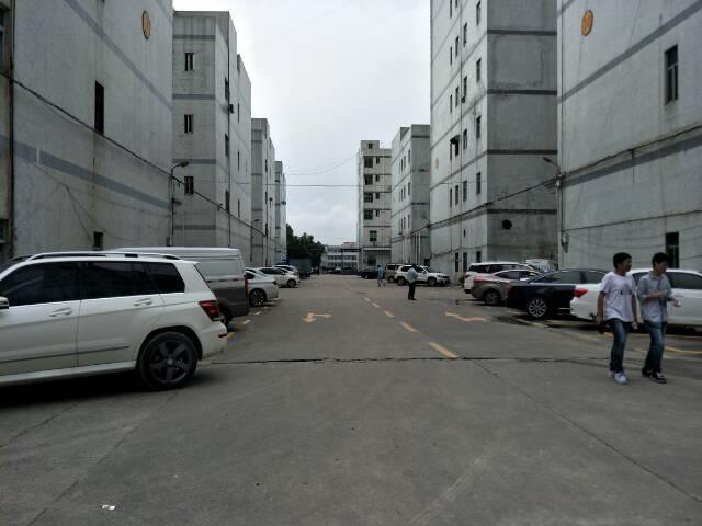观澜福民新出带装修原房东厂房一楼1200平招租