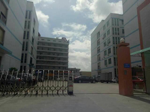大塘村107国道旁新出1-2层4200平,带豪华装修