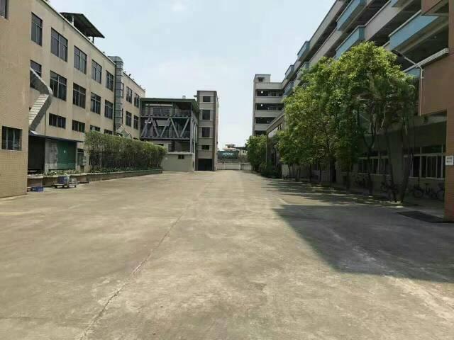 黄江镇豪华工业区滴水12米厂房厂房分租