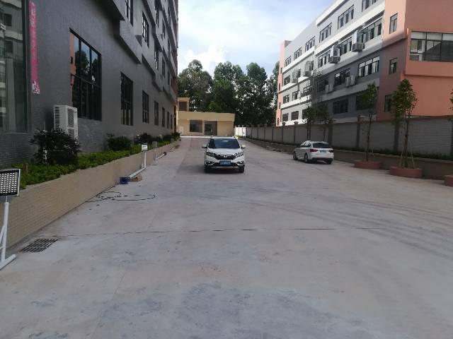 金凤凰全新地坪漆水电齐全厂房-图3