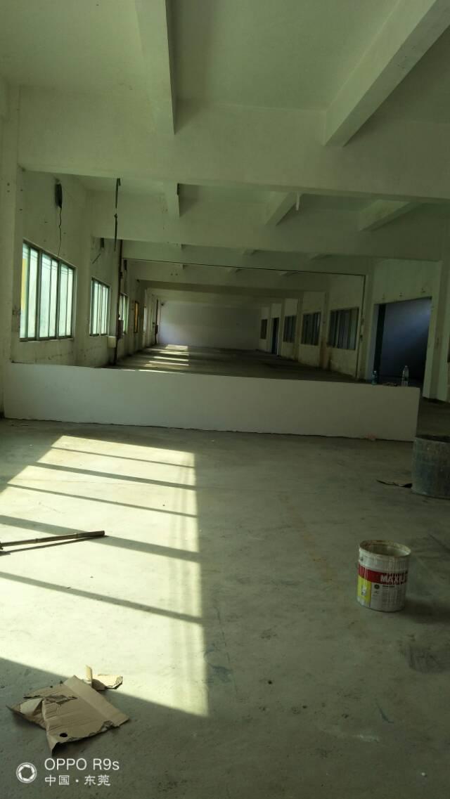 高埗花园式厂房分租2500平方-图2