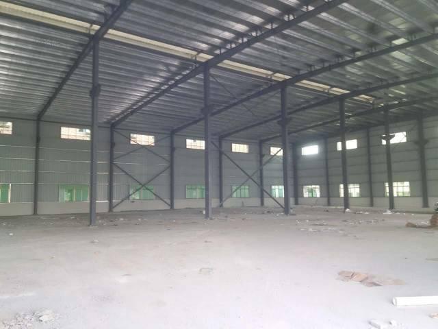 西丽新出独院钢构8米高厂房3000平方招租