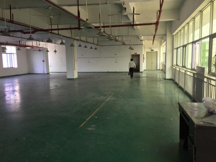 石碣新出楼上800平方精装厂房