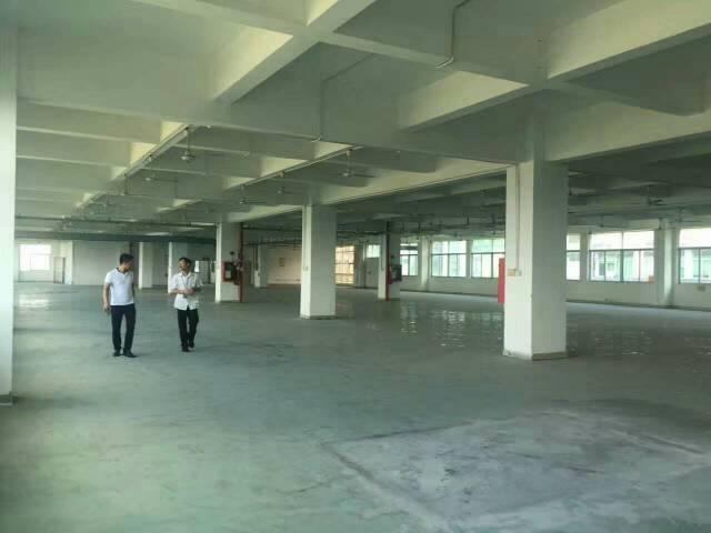 平湖成熟工业区一楼1000平方米原房东(无公摊面积厂房)招租
