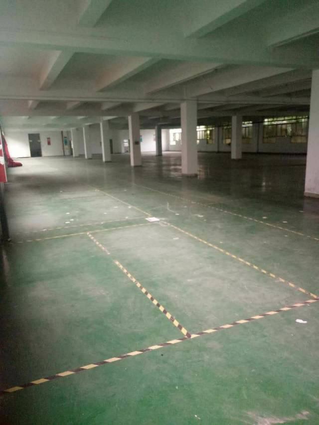 龙华工业路旁豪华装修独门独院厂房5000平招租