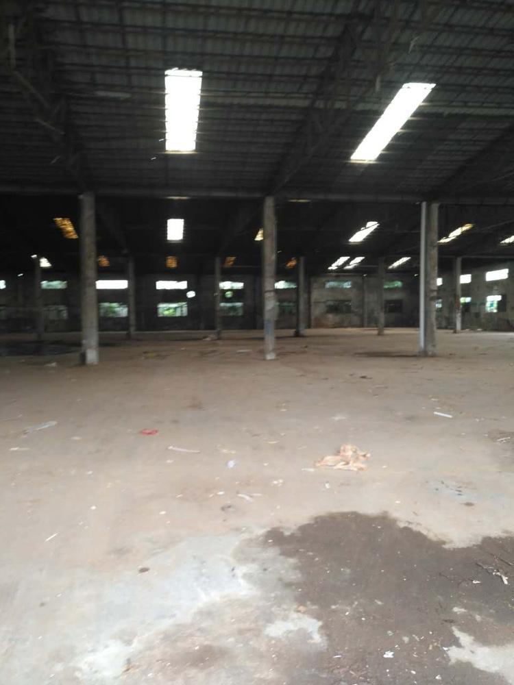6500平滴水8米钢构厂房招租