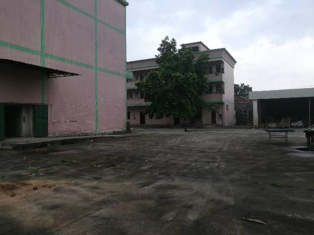 黄江镇中心经典独院厂房1-2层3000平米火爆招租