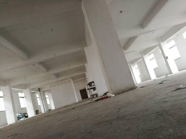 石碣新出工业园标准厂房三楼600㎡,带电梯 只租8.5元