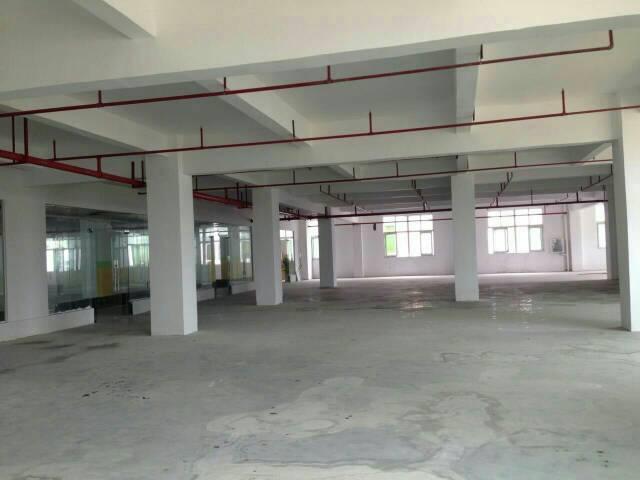 横岗横坪公路边一楼高6米1450平米标准厂房招租-图4