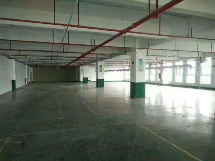 公明高新园区楼上整层2600平 重工业厂房-图2
