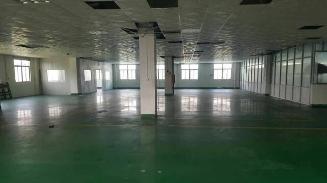 黄江社贝独院厂房出租,现成纸箱厂房,2400平方