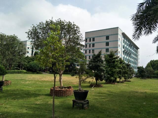 寮步新出全新独院总面积65000平米三个月交房