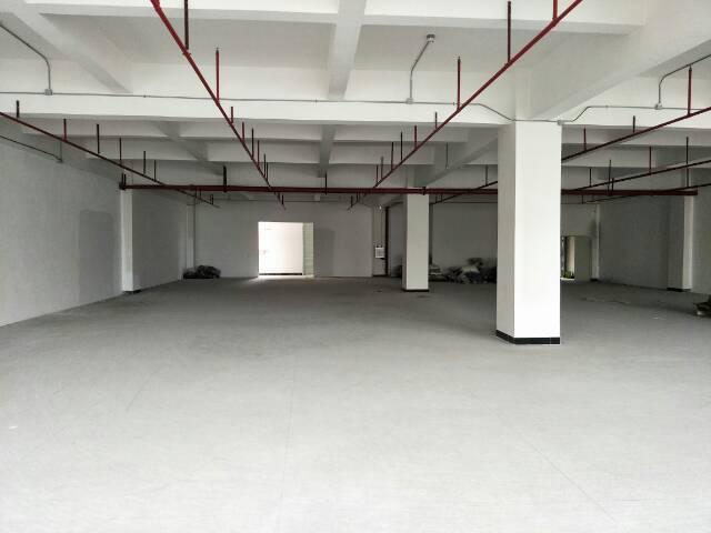 标准厂房出租二楼1000平方