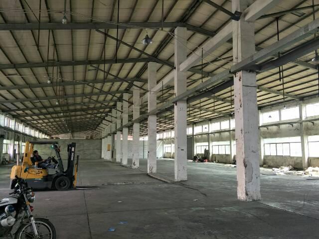 石岩水田新出8米高钢构厂房