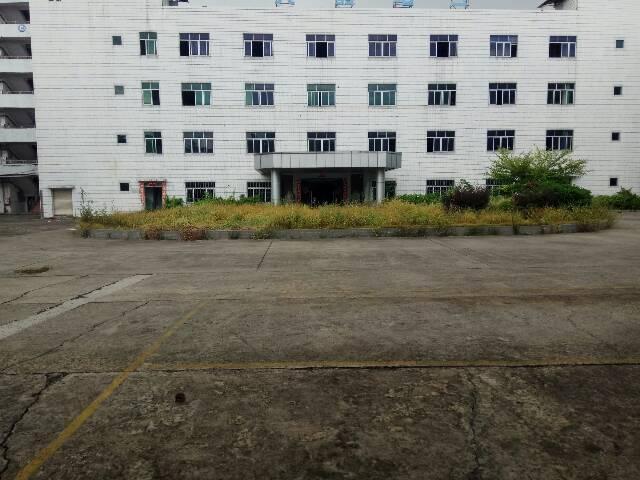 石碣中心工业区独院厂房