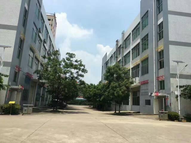 大浪福龙路出口原房东厂房1200平方转租,