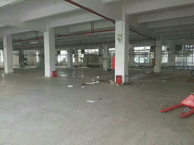 平湖平龙路附近一楼1150平米厂房出租